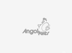AngolAves